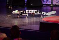 bio-robot